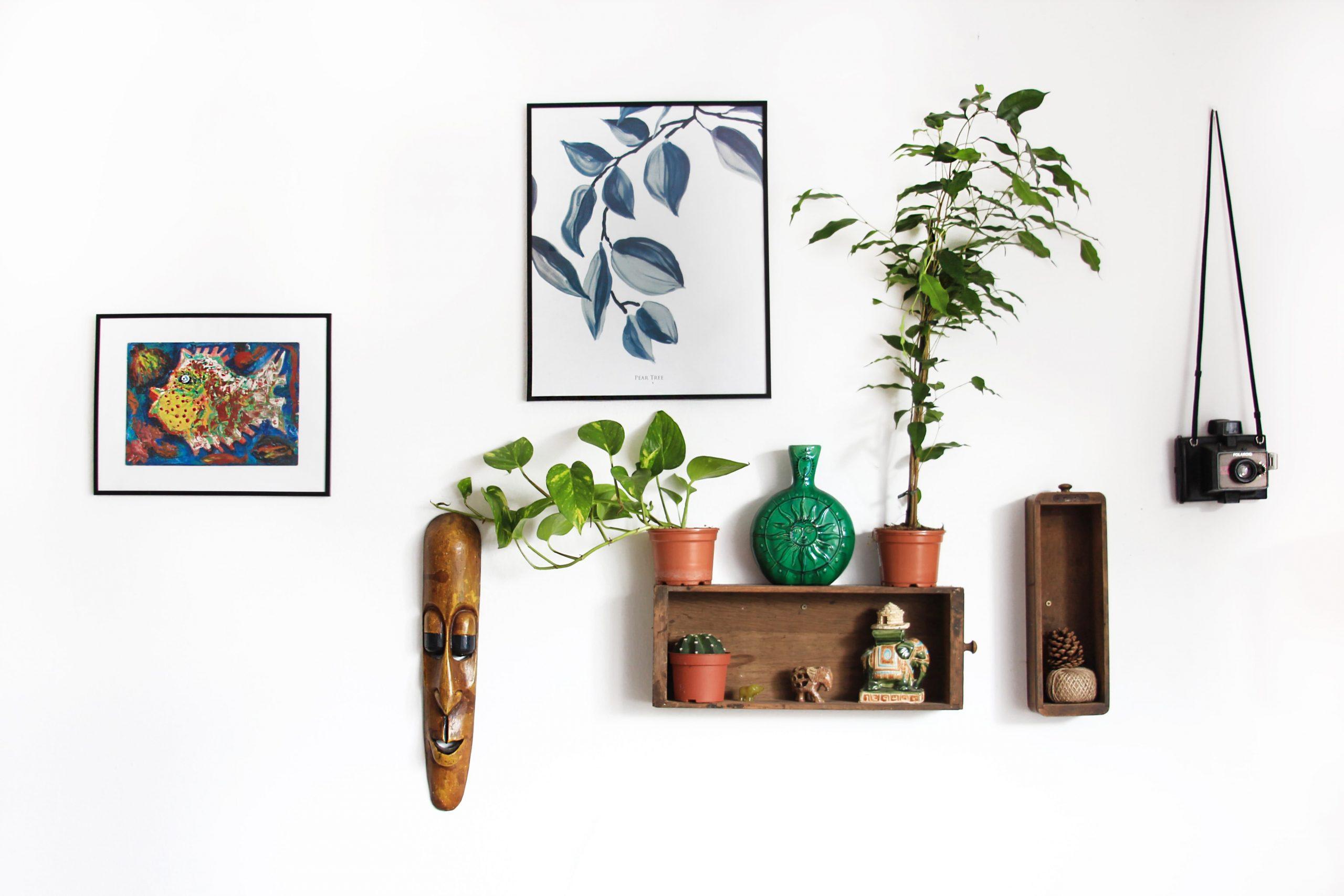 Comment embellir votre maison sans dépenser d'argent ?